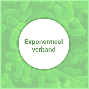 exponentieel_verband