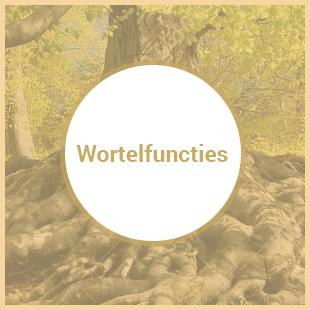 wortelfuncties