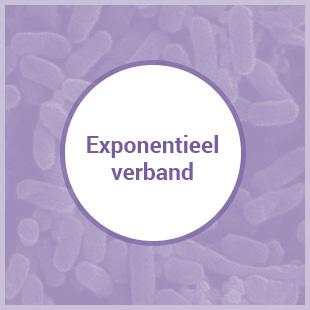 Havo A Exponentieel Verband